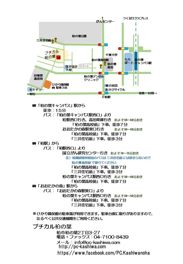 プチカル2 略図(カラー)